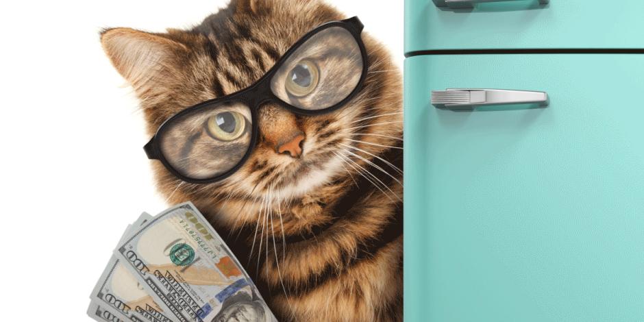 Налоговый вычет после покупки квартиры в ипотеку: как получить в 2019 году