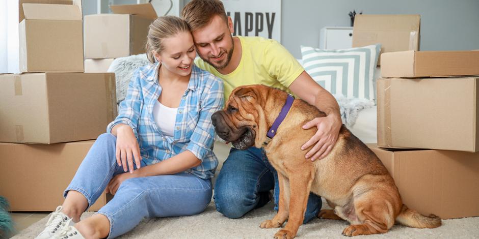 Оформить ипотеку с господдержкой в СберБанке можно по ставке от 0,1% годовых