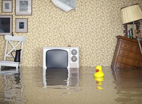 Затопили соседи сверху: что делать?